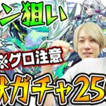 【動画】【モンスト】新限定カノン狙いで超獣ガチャ250連!※グロ注意